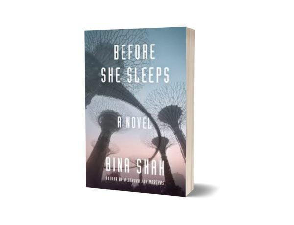 Before She Sleeps A Novel Novel By Bina Shah