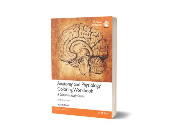 Anatomy and Physiology Coloring Workbook 11th Edition By Elaine N Marieb